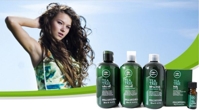 Best tea tree shampoos