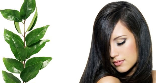 Top benefits of curry leaves - How to use curry leaves for hair care