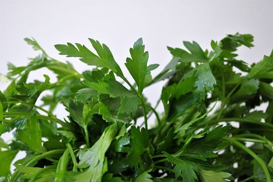 Parsley for Anemia